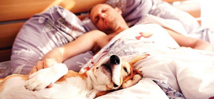 Diabetul, un factor care afecteaza calitatea somnului